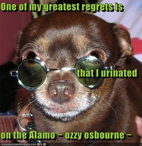 One of my greatest regrets is that I urinated  on the Alamo ~ ozzy osbourne ~