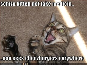 schizo kitteh not take medicin..  ..nao sees cheezburgers evrywhere