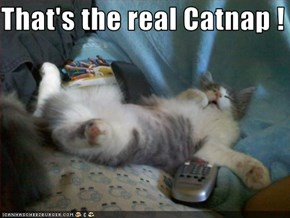 That's the real Catnap !