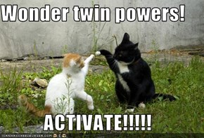 Wonder twin powers!  ACTIVATE!!!!!