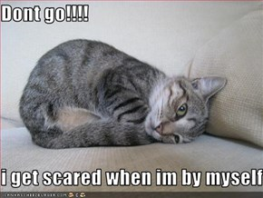 Dont go!!!!  i get scared when im by myself