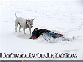 I don't remember burying that there.