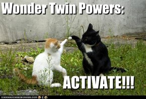 Wonder Twin Powers: