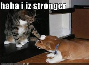 haha i iz stronger