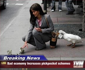 Breaking News - Bad economy increases pickpocket schemes