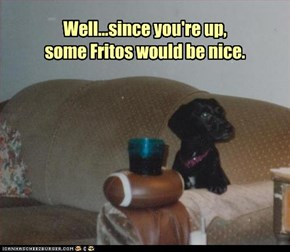 Well...since you're up,  some Fritos would be nice.