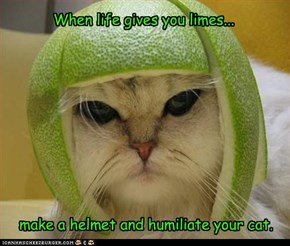 When life gives you limes...