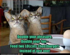 Double your pleasure, Double your fun-- Feed two LOLcats cheezburgerz Instead of just one!