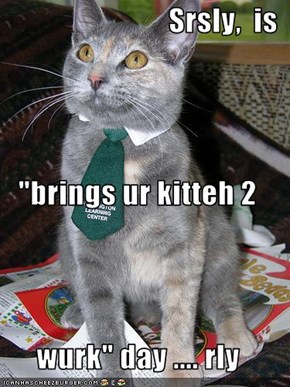 "Srsly,  is ""brings ur kitteh 2 wurk"" day .... rly"