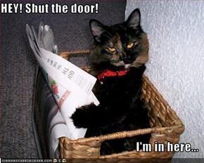 HEY! Shut the door!  I'm in here...