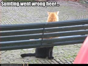 Sumting went wrong heer...