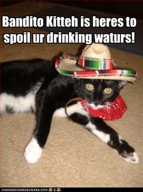 Bandito Kitteh is heres to  spoil ur drinking waturs!