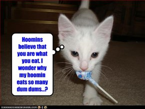 Hoomins believe that you are what you eat. I wonder why my hoomin eats so many dum dums...?