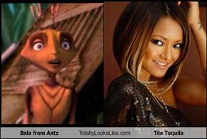 Bala from Antz Totally Looks Like Tila Tequila