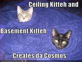 Ceiling Kitteh and Basement Kitteh Creates da Cosmos