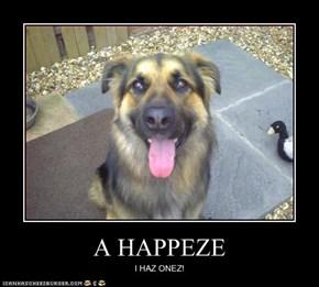 A HAPPEZE