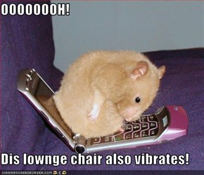 OOOOOOOH!  Dis lownge chair also vibrates!