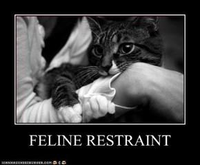 FELINE RESTRAINT