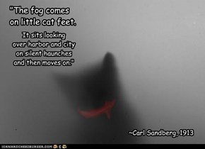 """The fog comes  on little cat feet."