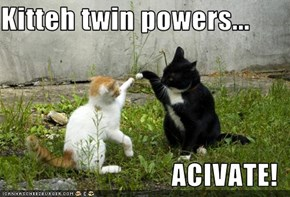 Kitteh twin powers...  ACIVATE!