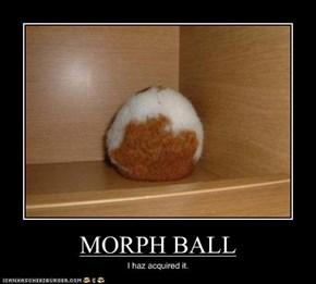 MORPH BALL