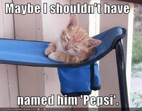 Maybe I shouldn't have  named him 'Pepsi'.