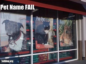 Pet Name Fail