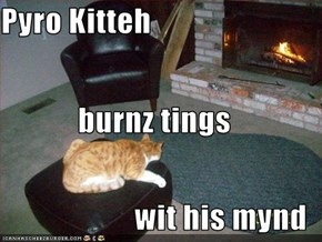 Pyro Kitteh burnz tings wit his mynd