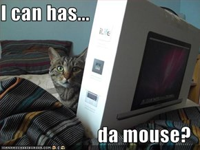 I can has...  da mouse?