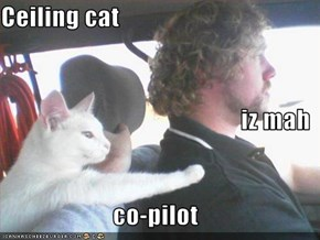 Ceiling cat iz mah co-pilot