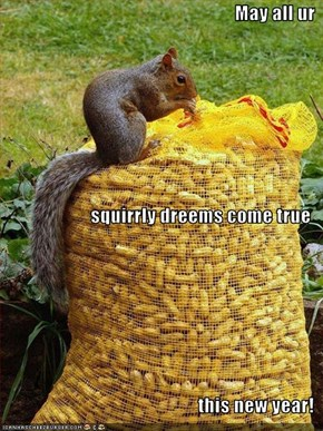 May all ur squirrly dreems come true this new year!