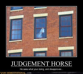 JUDGEMENT HORSE