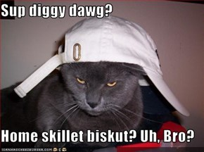 Sup diggy dawg?  Home skillet biskut? Uh, Bro?