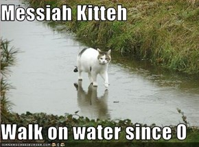 Messiah Kitteh  Walk on water since 0