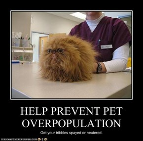 HELP PREVENT PET OVERPOPULATION