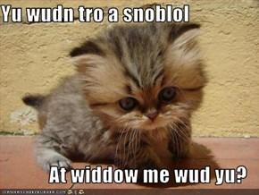 Yu wudn tro a snoblol  At widdow me wud yu?