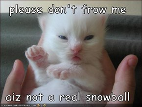 please don't frow me  aiz not a real snowball