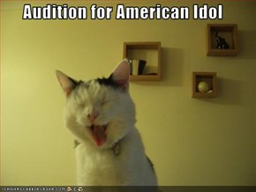 Audition for American Idol