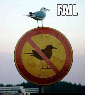 Bird-sign Fail