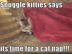 Snuggle kitties says  its time for a cat nap!!!