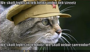 We shall fights in teh fieldz and in teh streetz  We shall fights in teh hillz, We shall nebur surrendur!