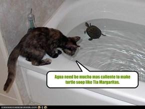 Agua need be mucho mas caliente to make turtle soop like Tia Margaritas.