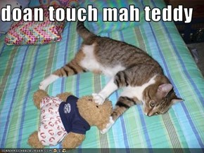 doan touch mah teddy