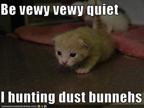Be vewy vewy quiet  I hunting dust bunnehs