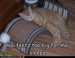 ketteh big footz