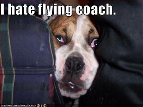I hate flying coach.