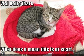 Wai Hallo thare,  What does u mean this is ur scarf...