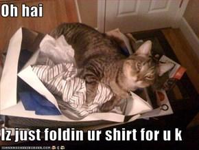 Oh hai  Iz just foldin ur shirt for u k