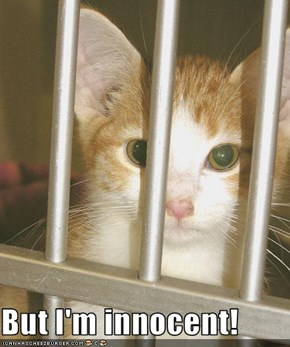 But I'm innocent!
