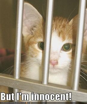 But I'm innocent!
